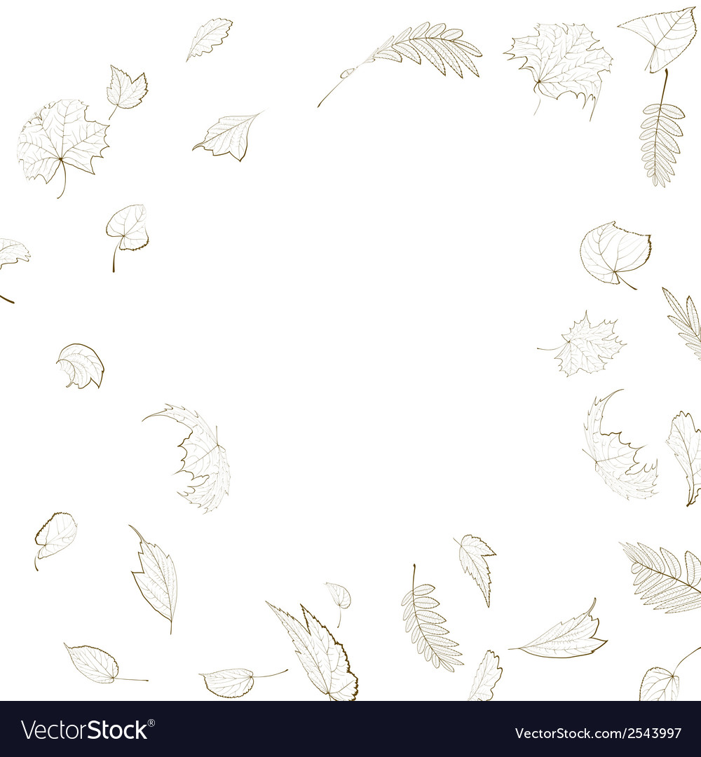 Fall leaf skeletons autumn design template vector | Price: 1 Credit (USD $1)