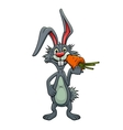 Funny cartoon rabbit eating a carrot vector