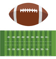 American football field and ball vector