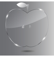 Realistic glass apple vector