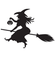 Witch on a broom vector