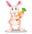 A fat bunny holding a carrot vector