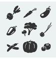Set of symbols vegetables vector