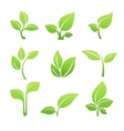 Green sprout symbol icon set vector