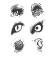 Set of animal eyes hand drawn eps8 vector
