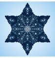 Beautiful blue snowflake vector