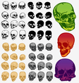 Skeleton design vector