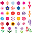 Flower color vector