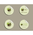 Set of green organic labels - stickers for natural vector