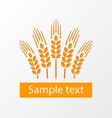Wheat ears emblem eps10 vector