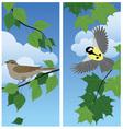 Birds among the branches vector
