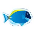 Tropical fish surgeon vector
