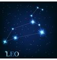 The leo zodiac sign of the beautiful bright stars vector