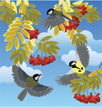 Birds among the branches vector