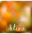 Autumn background with hand drawn lettering vector