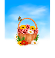 Holiday background basket full of flowers with a vector