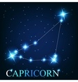 The capricorn zodiac sign of the beautiful bright vector