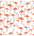 Flamingos seamless pattern eps10 vector