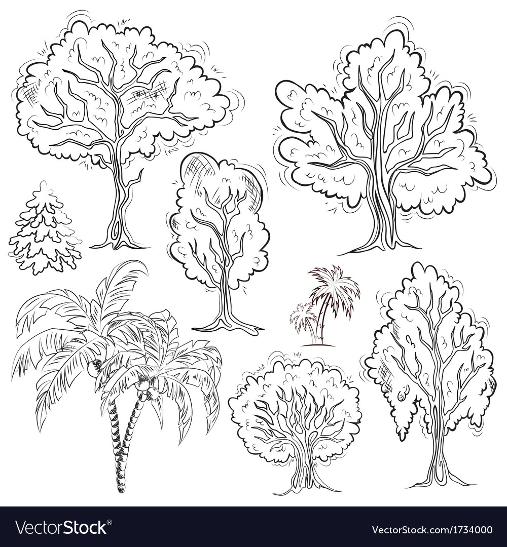 Set of isolated sketched trees vector | Price: 1 Credit (USD $1)