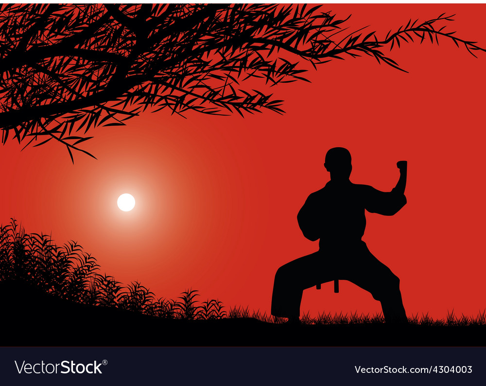 The man is engaged in karate against the sun vector | Price: 1 Credit (USD $1)