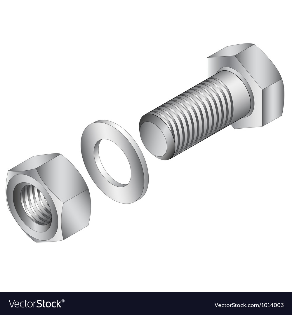 Stainless steel screw and nut vector
