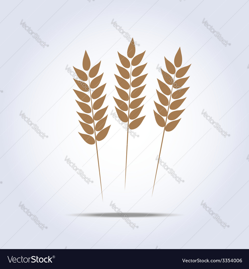 Wheat icon vector | Price: 1 Credit (USD $1)