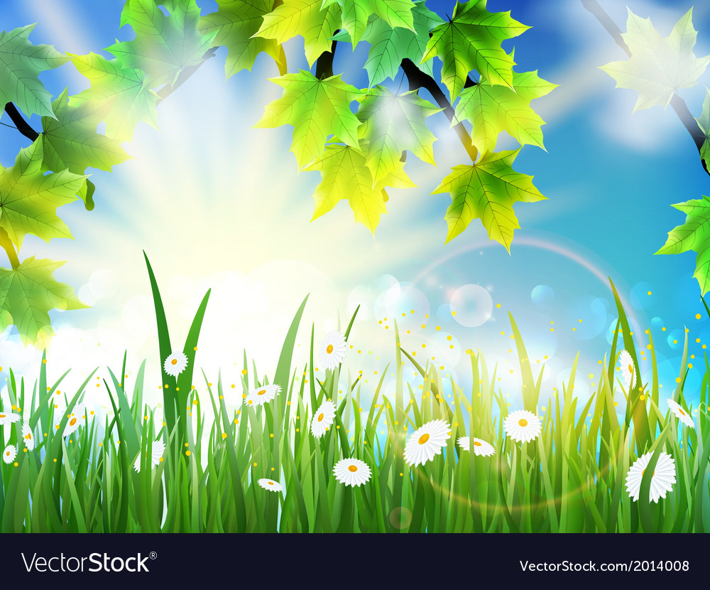 Green leaves on sunny vector | Price: 1 Credit (USD $1)