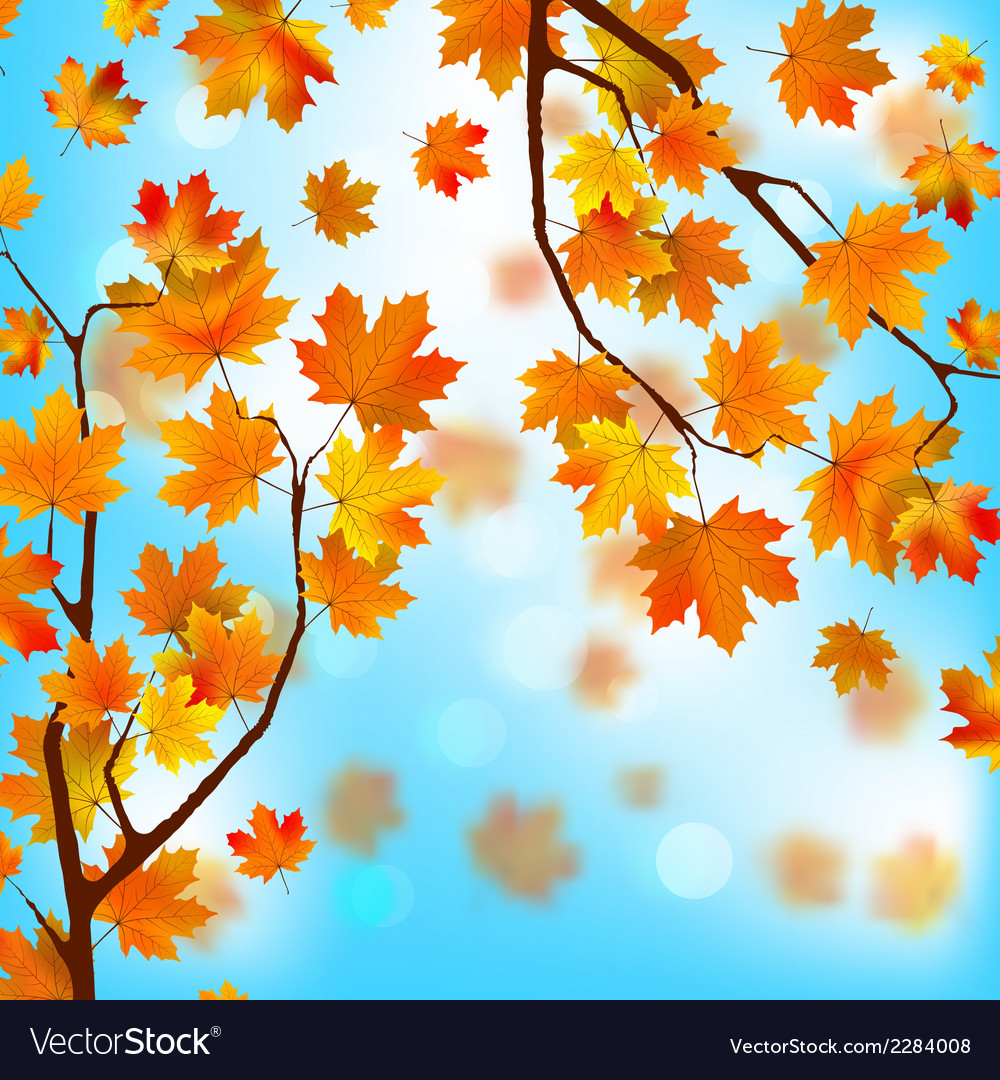 Red and yellow leaves against blue skyeps 8 vector | Price: 1 Credit (USD $1)