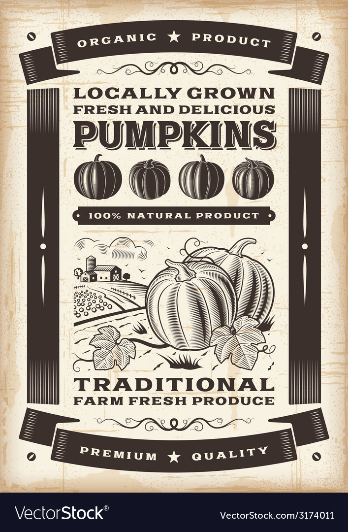 Vintage pumpkin harvest poster vector | Price: 1 Credit (USD $1)