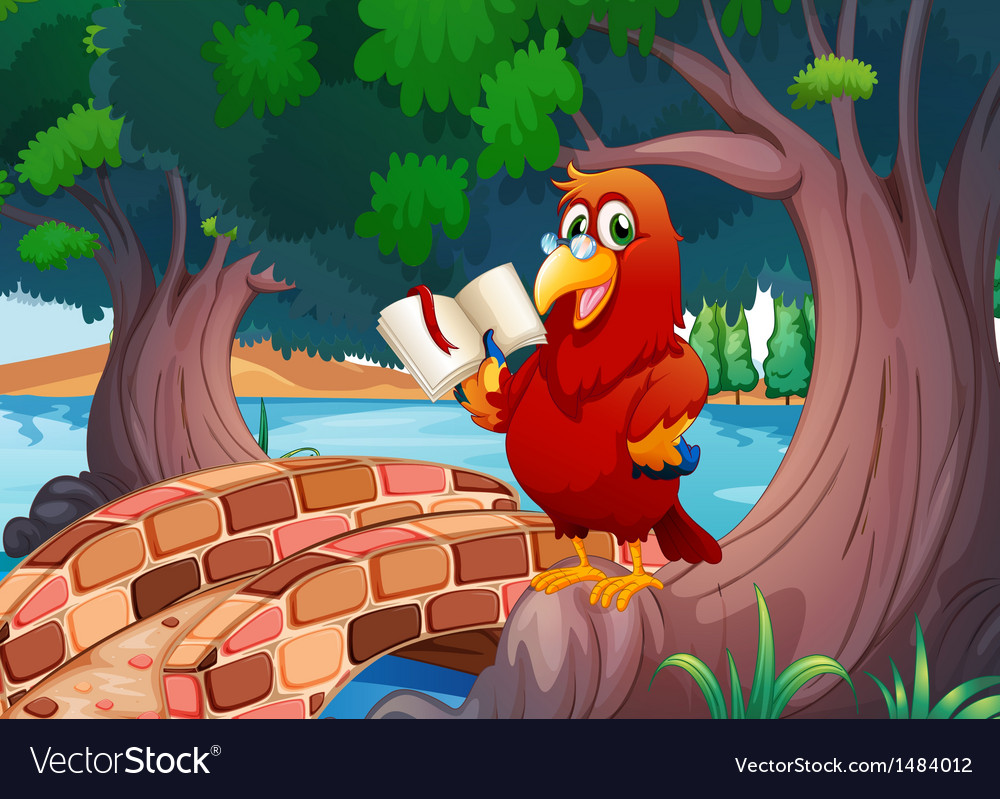 A red parrot reading a book vector | Price: 1 Credit (USD $1)