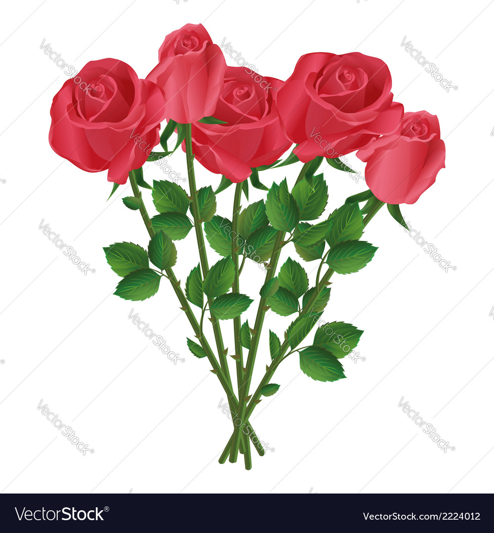 Celebration bouquet of red roses vector | Price: 1 Credit (USD $1)