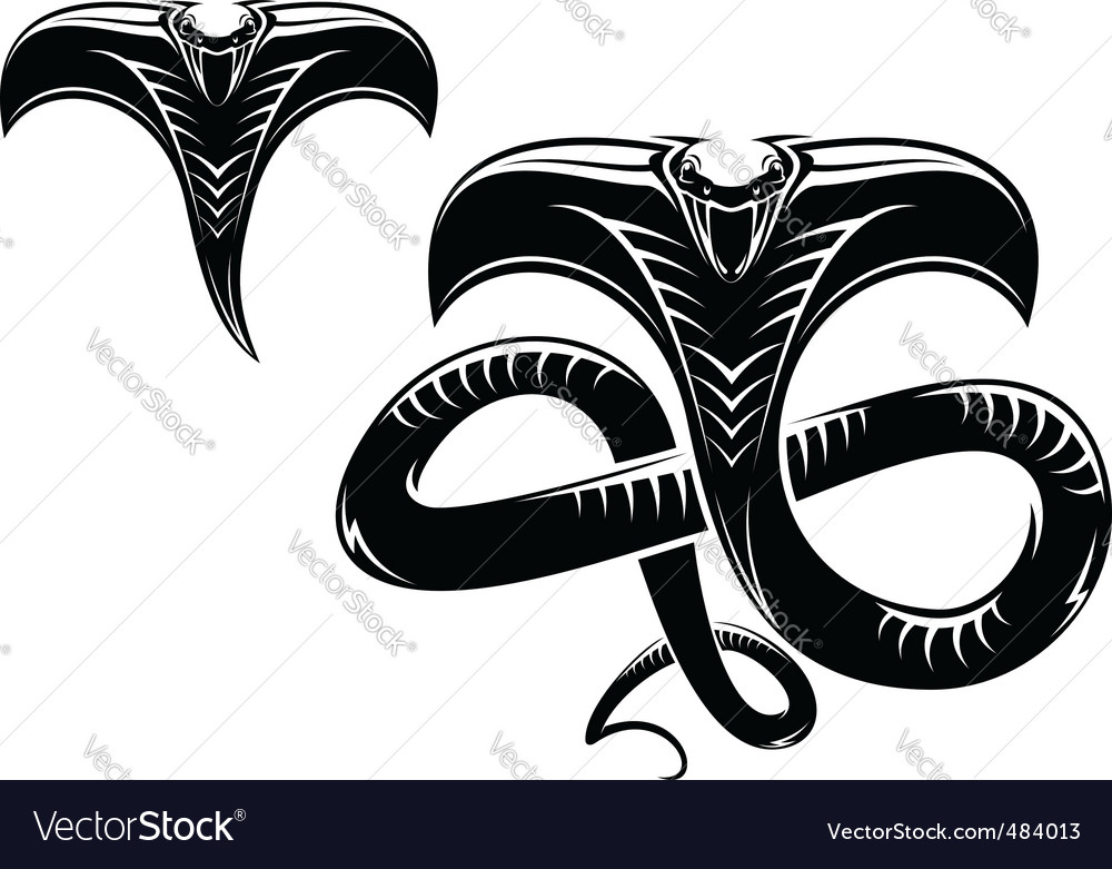 Snake tattoo vector | Price: 1 Credit (USD $1)