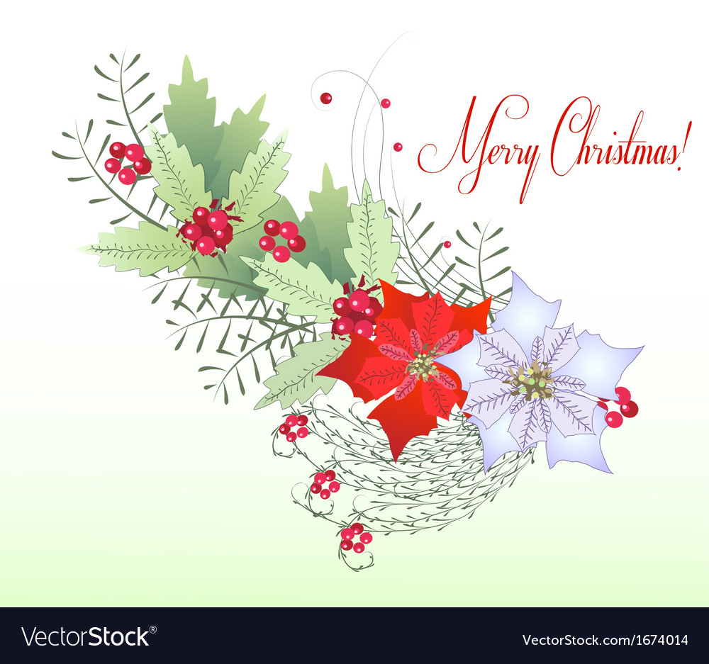 Christmas branch with berry vector | Price: 1 Credit (USD $1)
