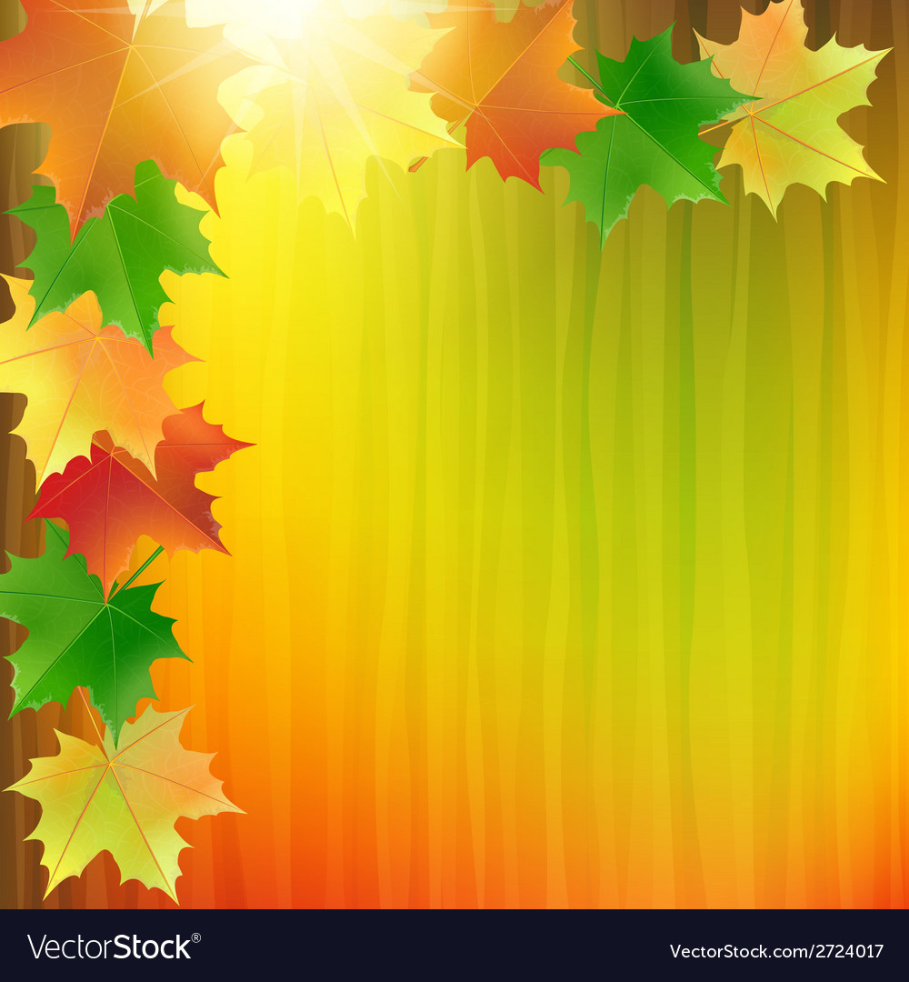 Colorful background with the autumn maple leaves vector | Price: 1 Credit (USD $1)