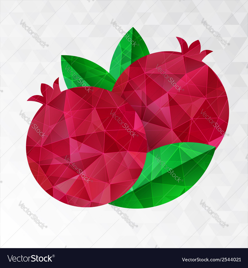 Two pomegranates vector | Price: 1 Credit (USD $1)