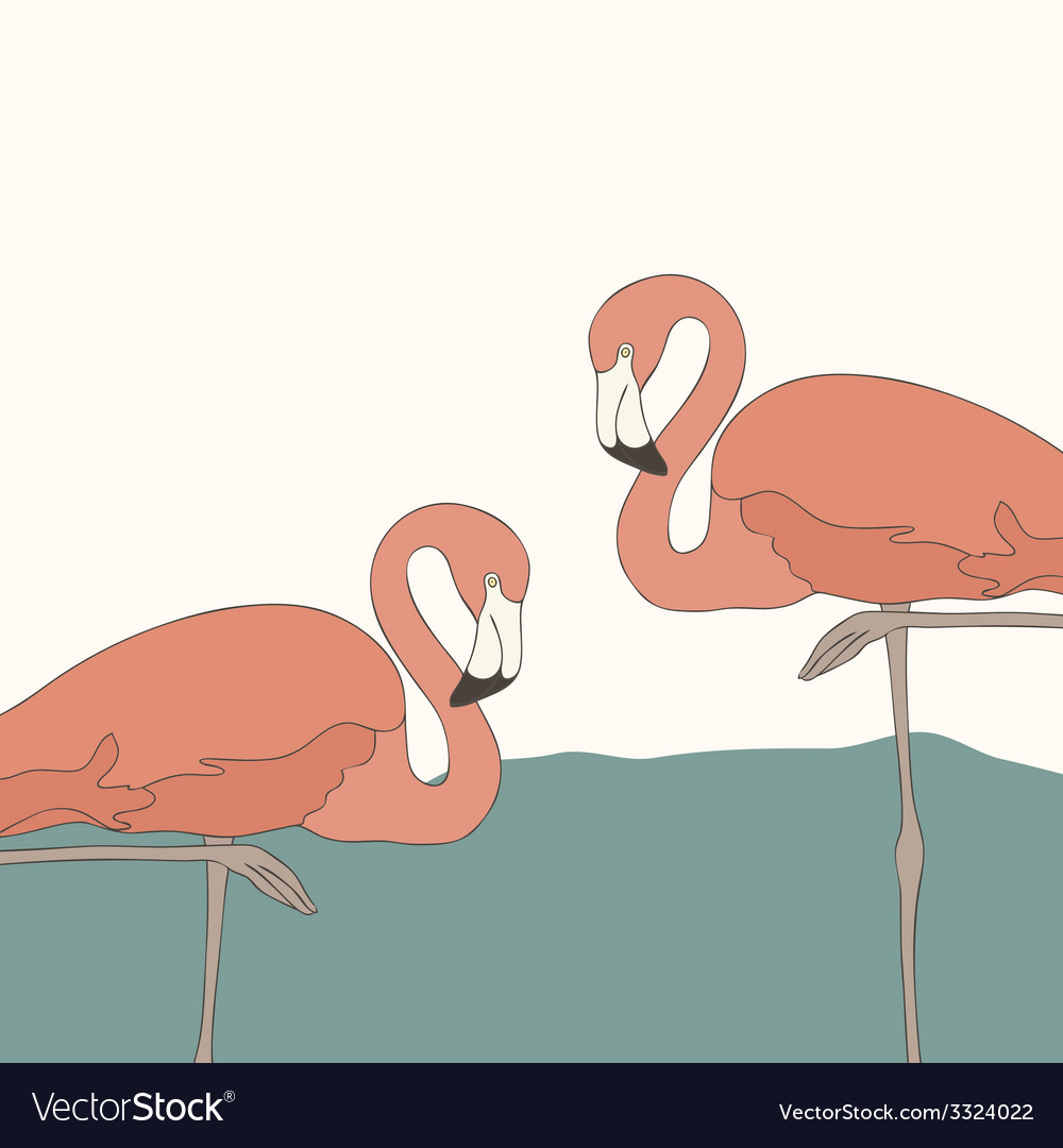 Flamingostand7 vector | Price: 1 Credit (USD $1)
