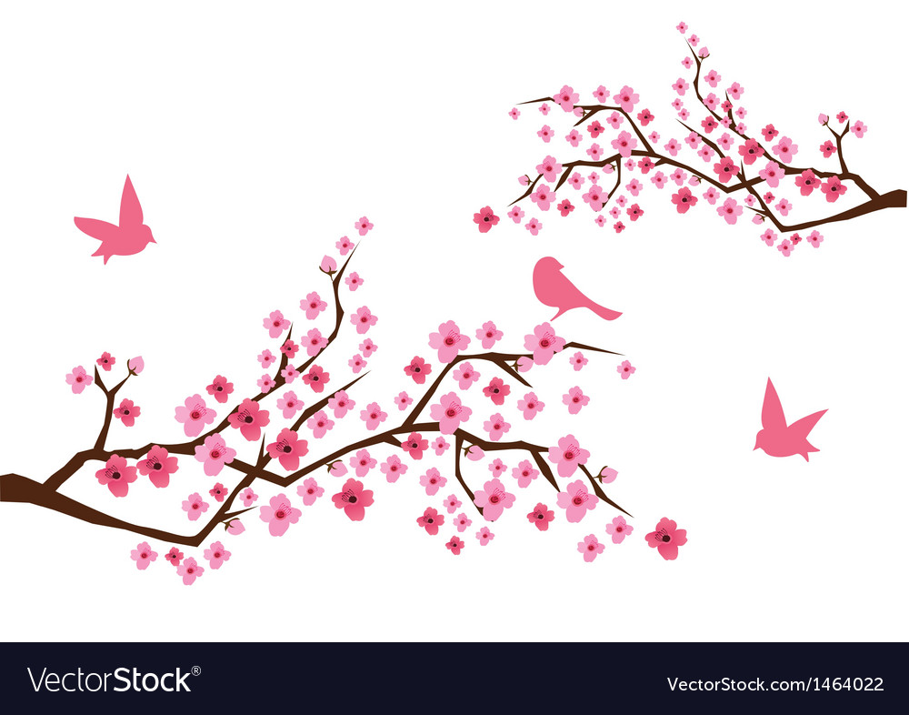 Sacura branches with birds vector | Price: 1 Credit (USD $1)