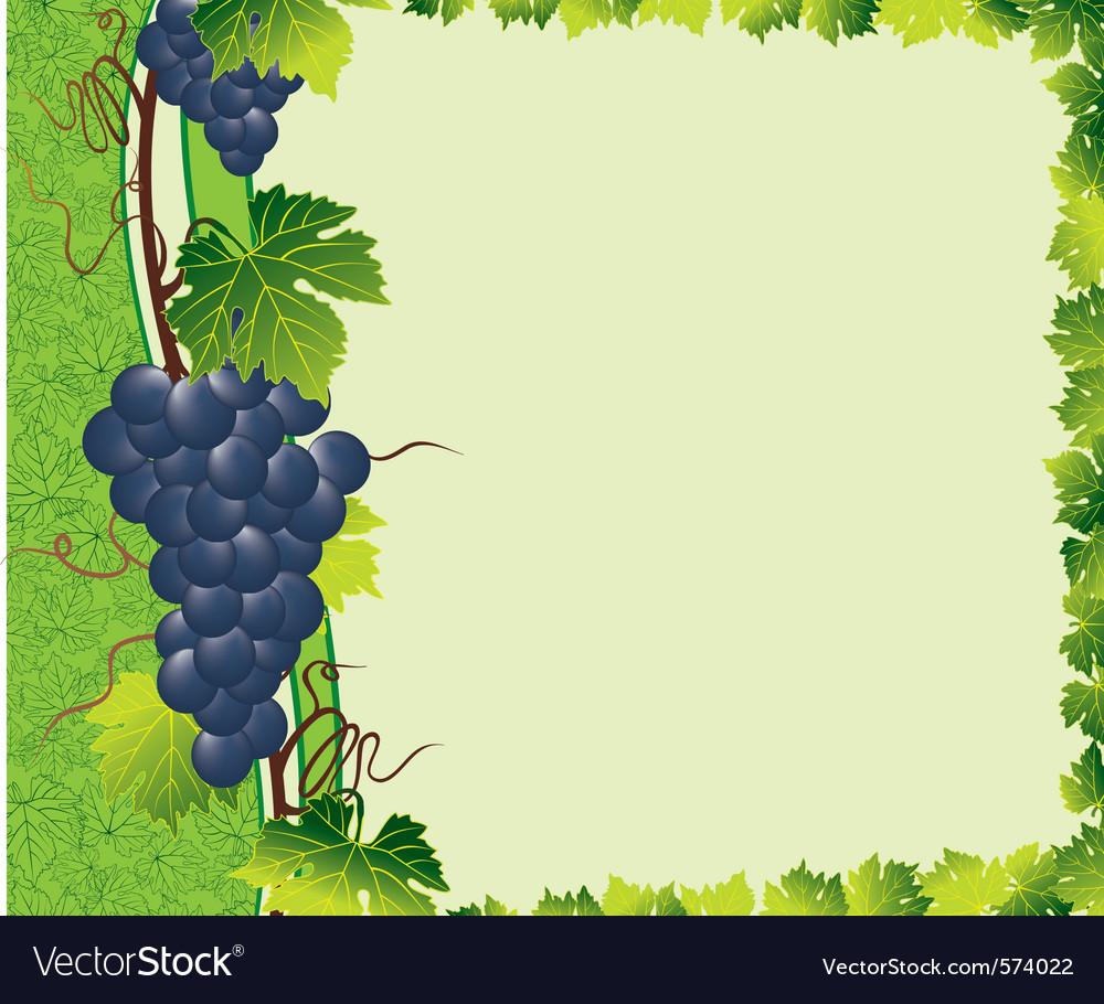 Vine green border vector | Price: 1 Credit (USD $1)