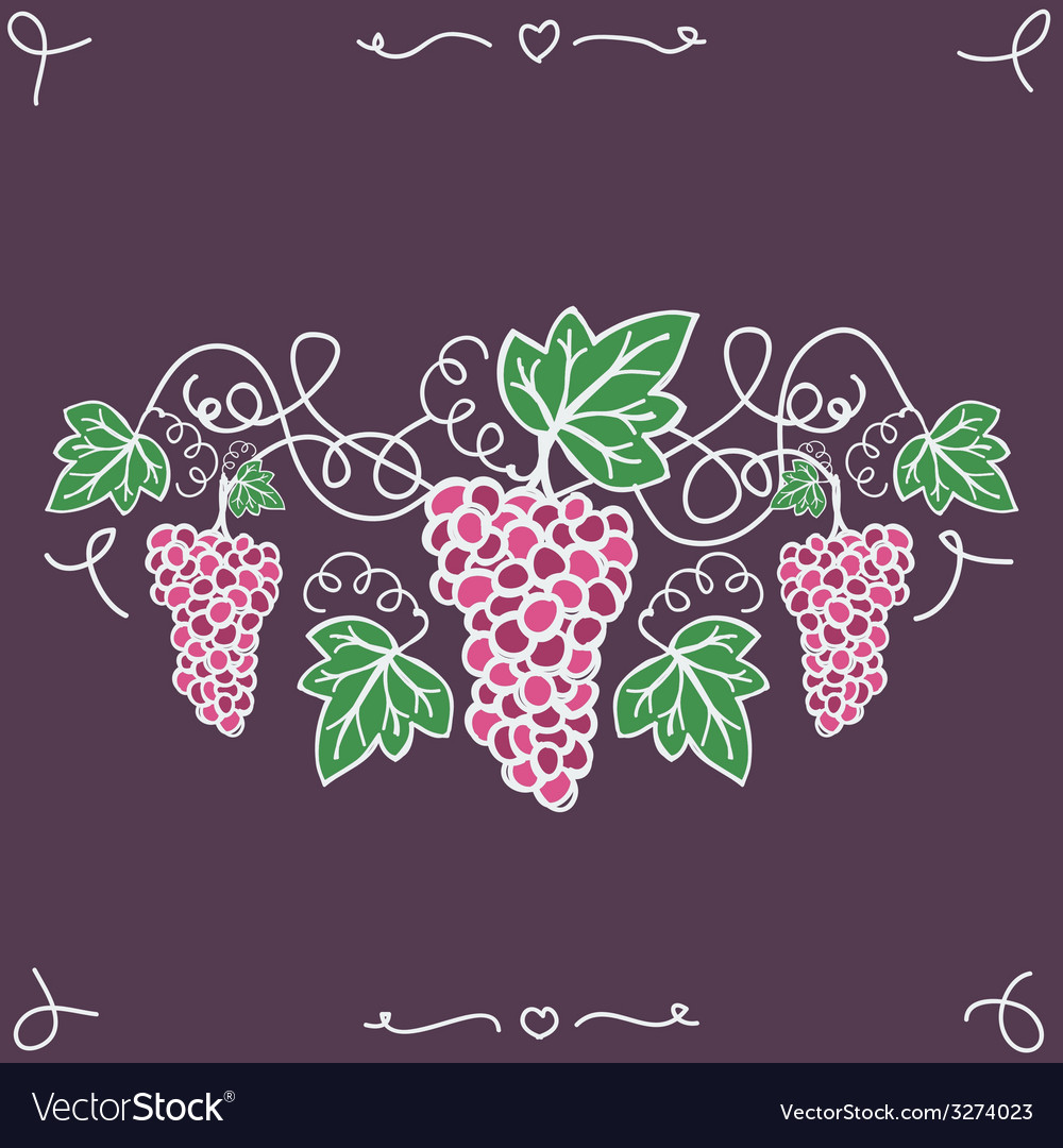 Hand-drawn decorative ripe grapes on the vine vector | Price: 1 Credit (USD $1)