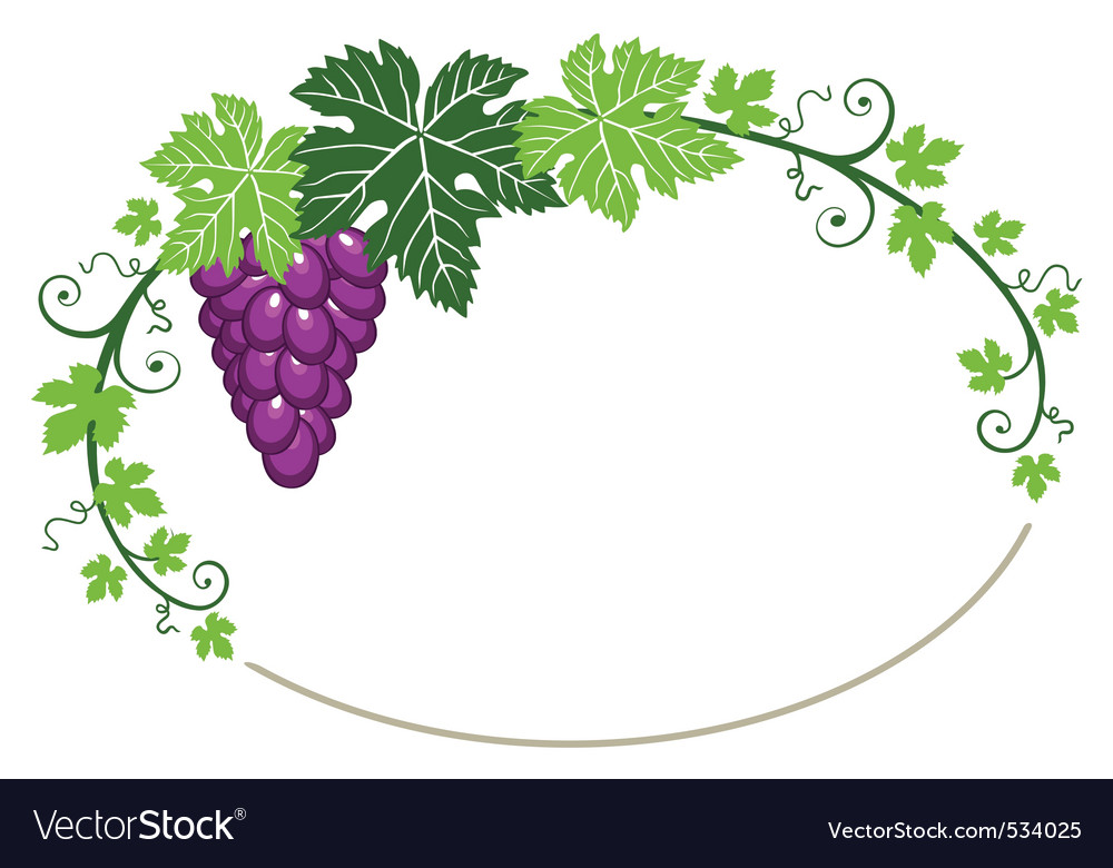 Grapes frame with leaves vector | Price: 1 Credit (USD $1)