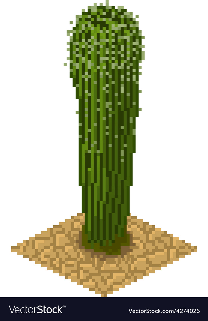 Isolated cactus vector | Price: 1 Credit (USD $1)