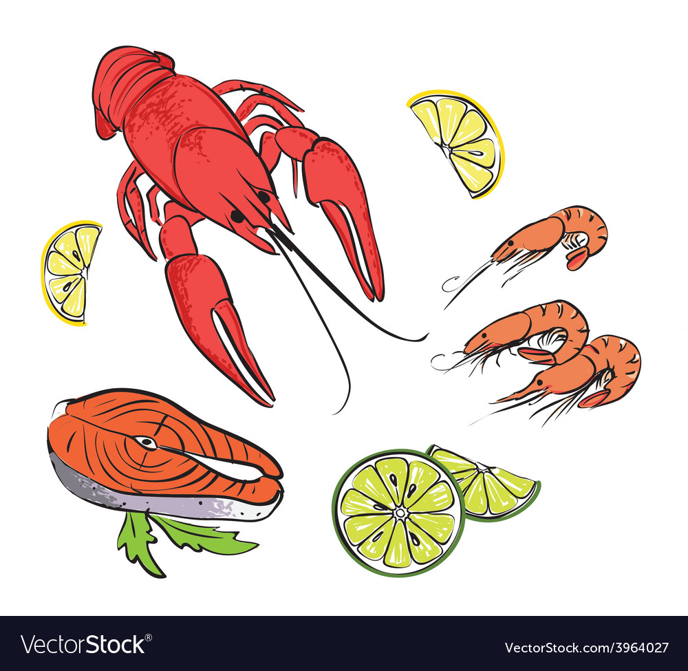 Hand drawn sea food set vector | Price: 1 Credit (USD $1)
