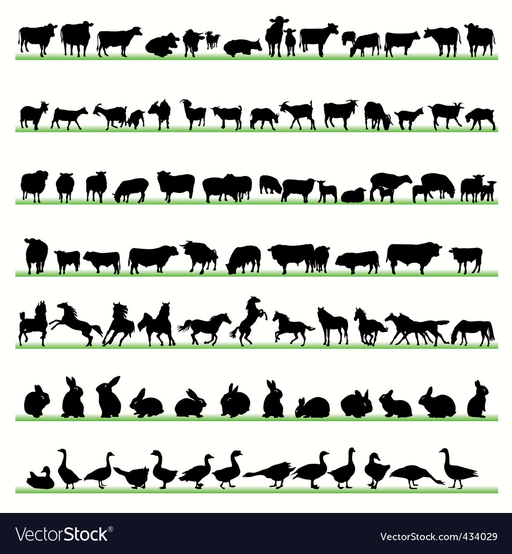 Farm animals2 vector | Price: 1 Credit (USD $1)