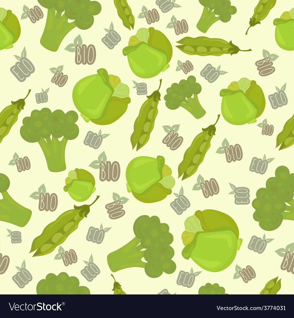 Eco bio broccoli vector | Price: 1 Credit (USD $1)