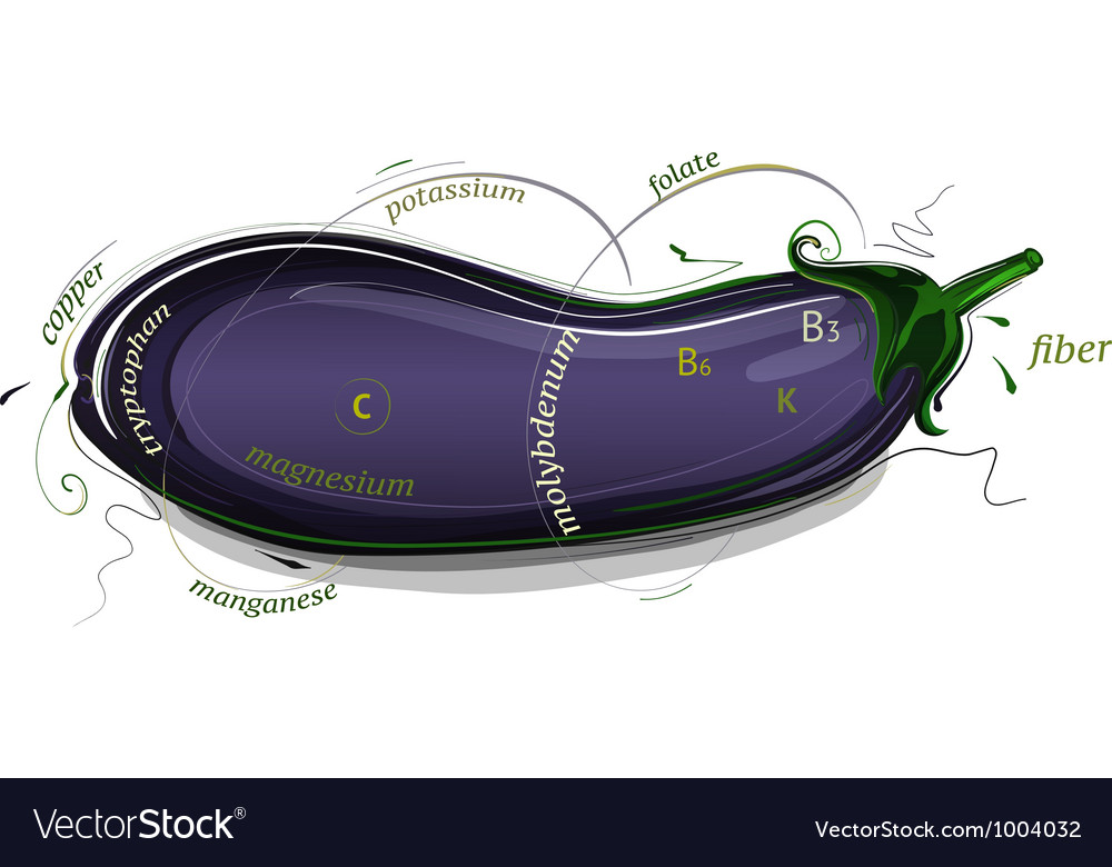 Eggplant vitamins and minerals vector | Price: 1 Credit (USD $1)