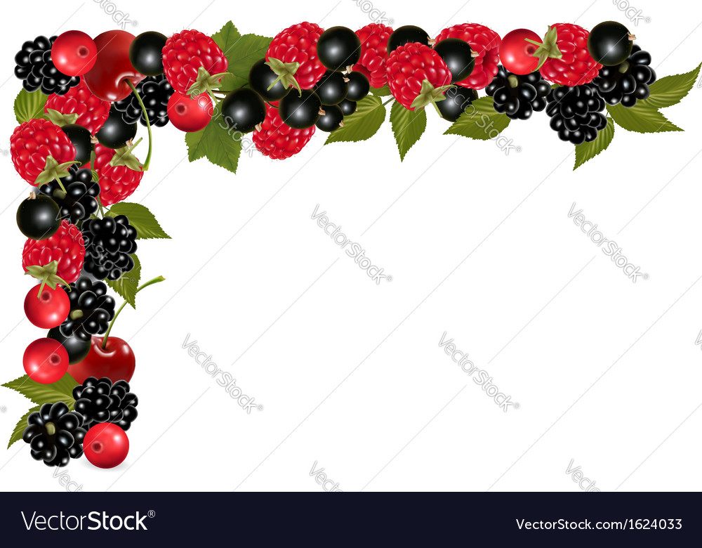 Frame made of fresh juicy berries vector | Price: 1 Credit (USD $1)