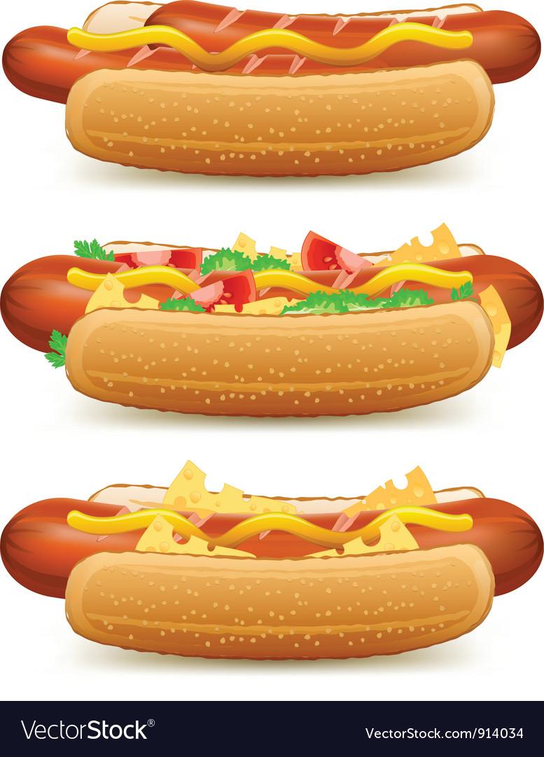 Hotdog cheese tomato salad vector | Price: 3 Credit (USD $3)