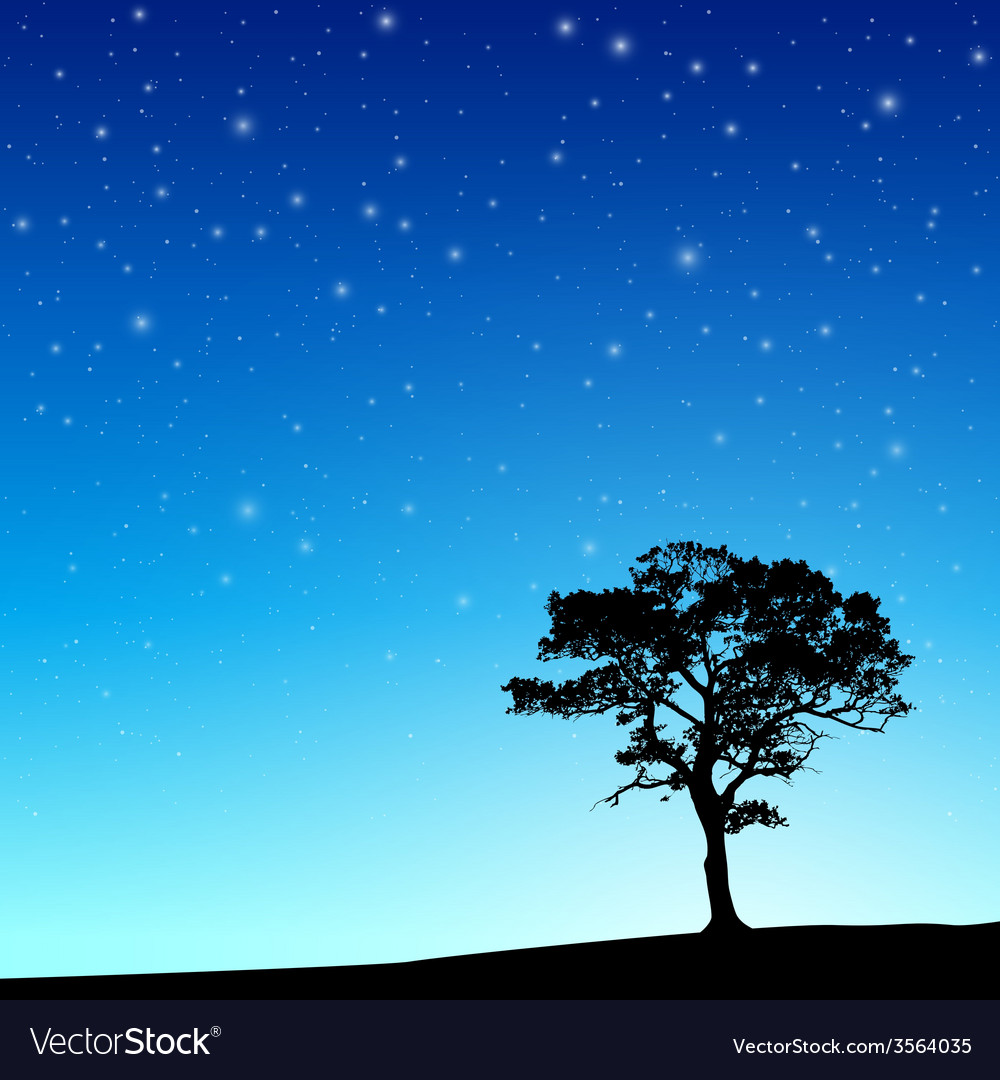 Tree with night sky vector
