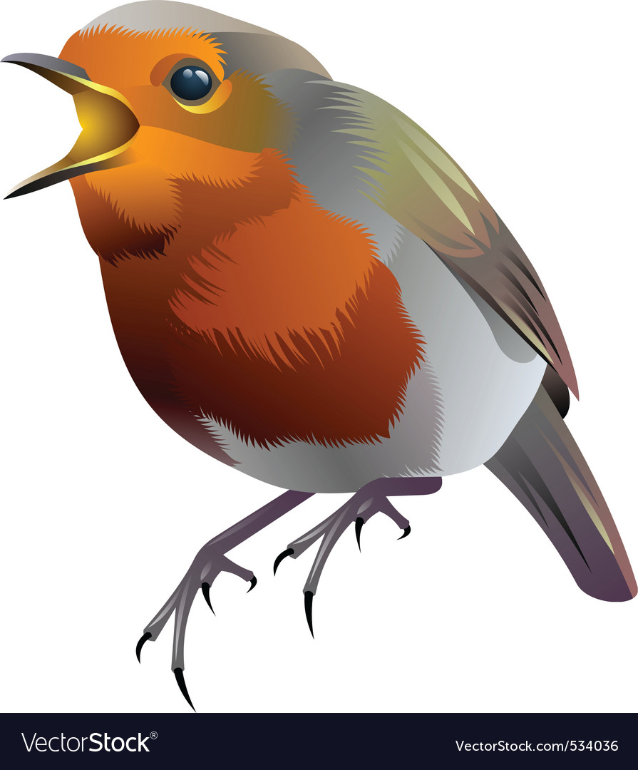 Sparrow vector | Price: 3 Credit (USD $3)