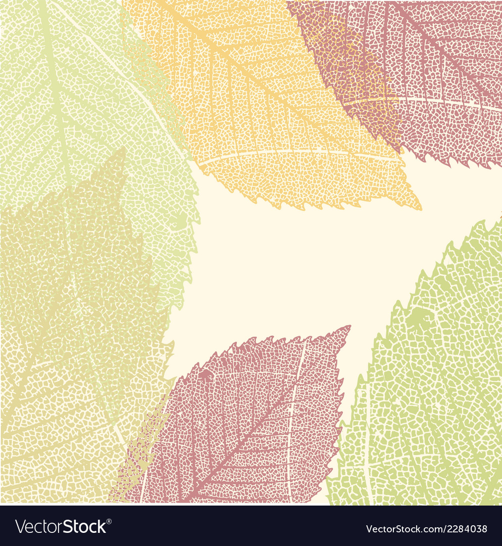Autumn leaves pattern eps 8 vector | Price: 1 Credit (USD $1)